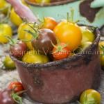 Tomates - Variétés anciennes