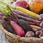 Légumes-racines et tuberculesd'hiver