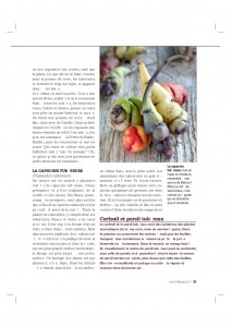 4S211_tubereux-page-004