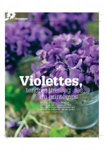 4S216_violettes-page-001