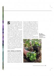 4S216_violettes-page-002