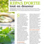 Recettes orties 02