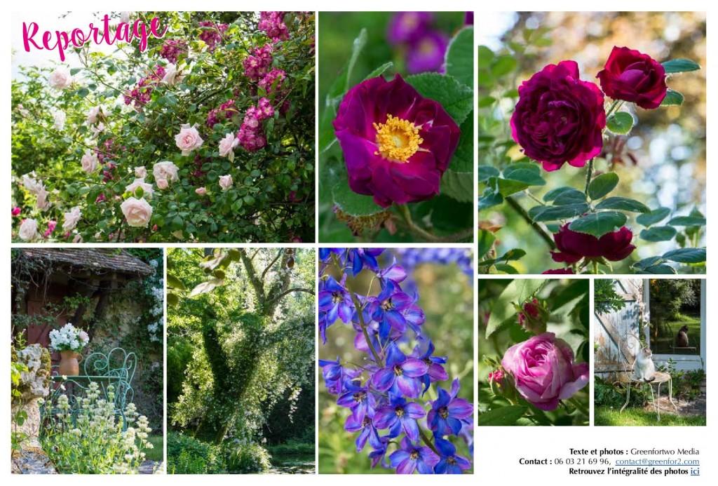 JARDIN_Roses_a_la_russe-P2